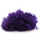 2 oz. Purple Reindeer Moss