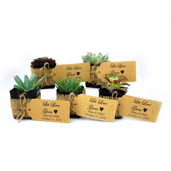 Succulents With Burlap Ribbon And Personal Card