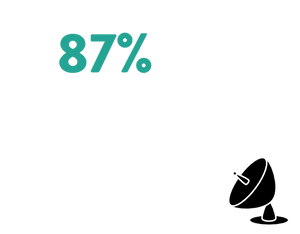 87% of customers purchase again