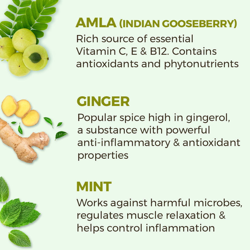 Amla Ginger Mint Vitamin C Shots - Pack of 15