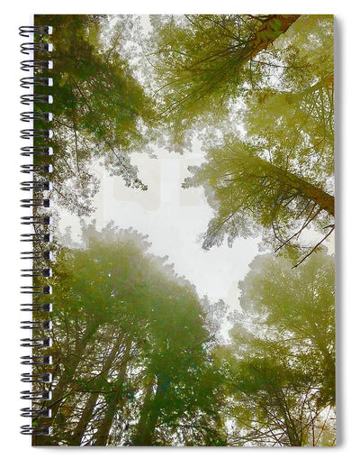 Redwood Fog - Spiral Notebook