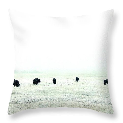 Snowy Bison Morning - Throw Pillow