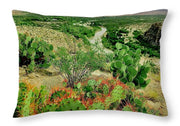 Southern Border Landscape - Throw Pillow