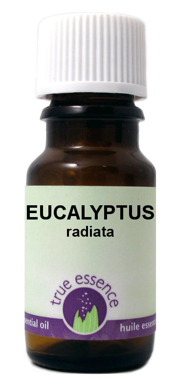 True Essence Essential Oil - Eucalyptus