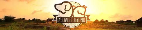 Above and Beyond Petcare
