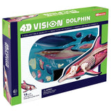 4D Vision Dolphin Anatomy Model Veterinary Teaching
