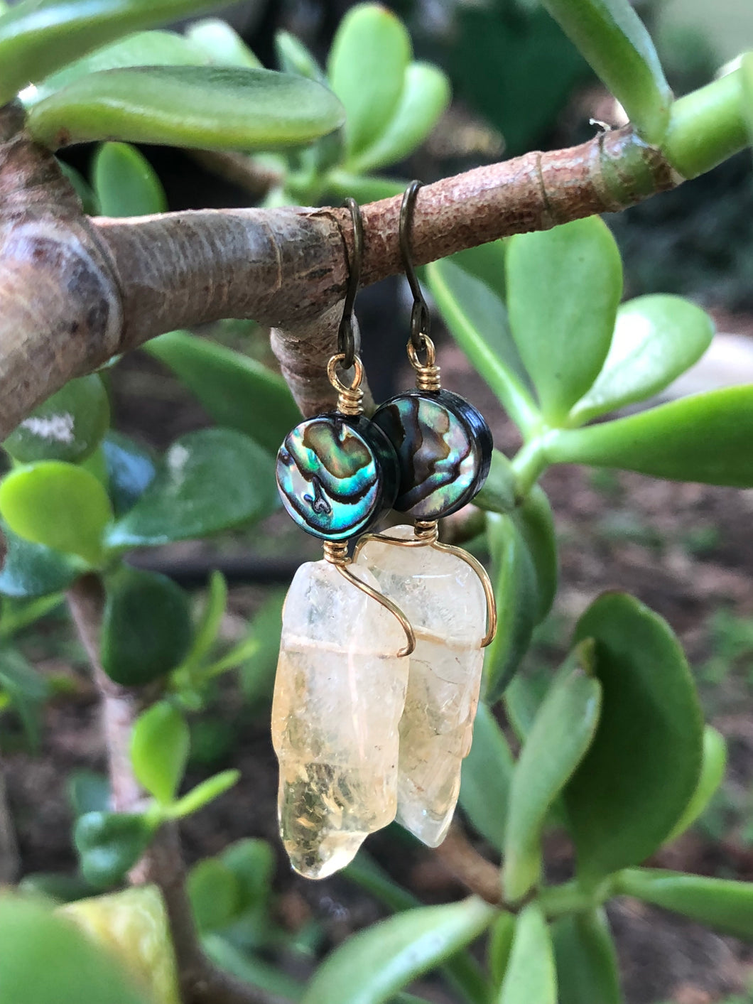 Abalone and Citrine Earrings