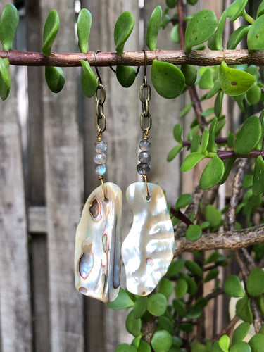 Abalone and Labradorite Earrings