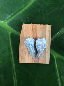 Blue Kyanite Stud Wings