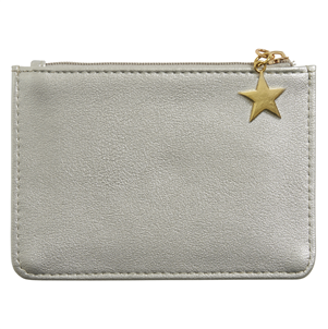Gorgeous Silver Purse with Gold Star Zipper