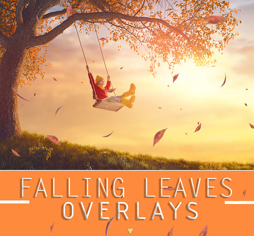 FALLING LEAVES ♢ OVERLAYS