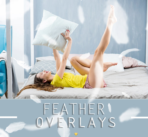 FEATHERS ♢ OVERLAYS