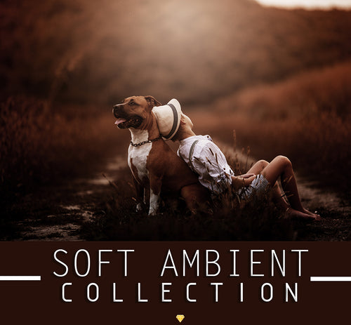SOFT AMBIENT ♢ COLLECTION
