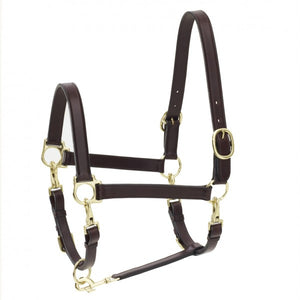Ovation® 4-Way Leather Grooming Halter