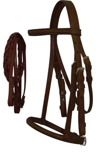 English headstall with raised browband and braided leather reins.