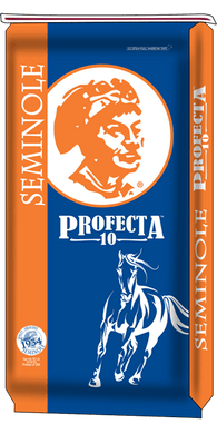 Seminole Profecta 10