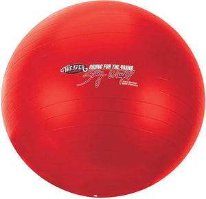 Stacy Westfall Activity Ball-LARGE