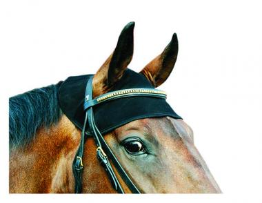 Therapeutic Equine Head Cap