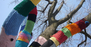 Get Set to Yarnbomb!!!