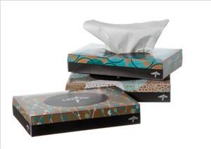 Standard 2-Ply Facial Tissues (Case of 200 Boxes)