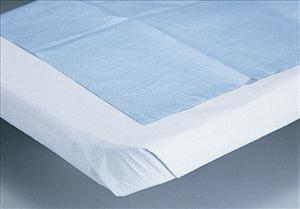 Drape Sheet, 2-Ply Tissue, White (Case)