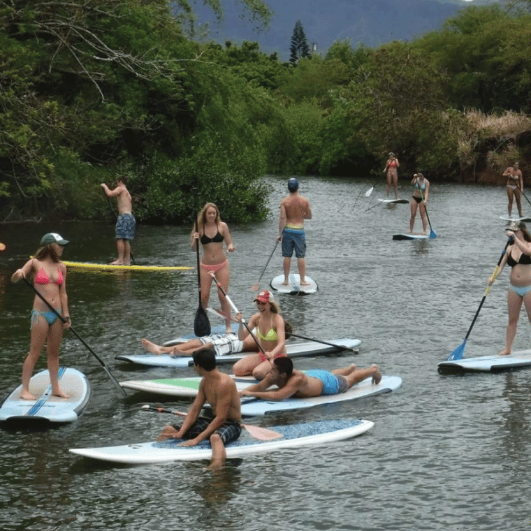 Stand Up Paddle Sub with Circle Island Tour | Waikiki Tours and Rentals