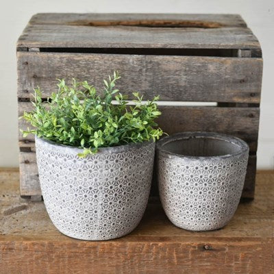 Dusty Black Pots