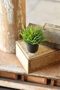 Greenpoint Pot No.1