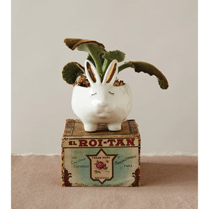 Rabbit Planter/Dish
