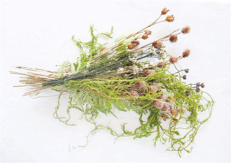 Natural Dried Creeping Cedar