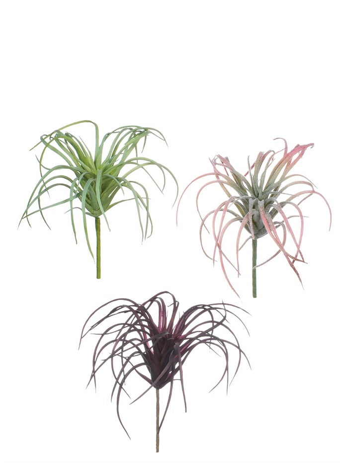 Air Plant Picks by The Feathered Farmhouse