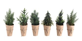 Paper Wrapped Trees, 6 Styles