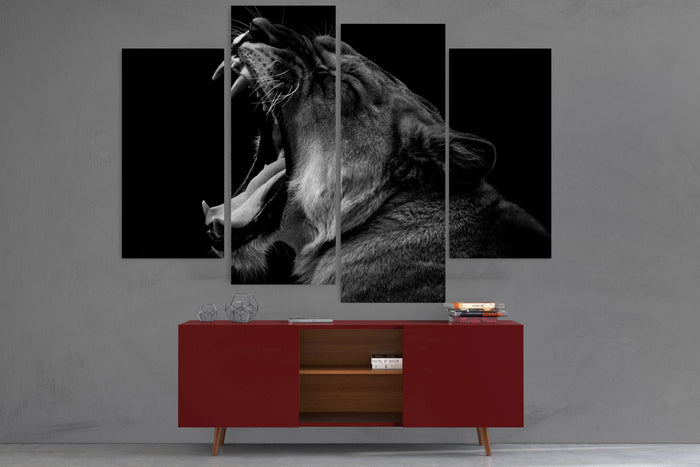 4 PC Black And White Lioness Canvas