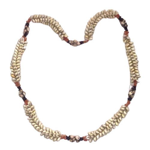 Antique Moroccan Cockle Shell Berber Long Necklace Necklace