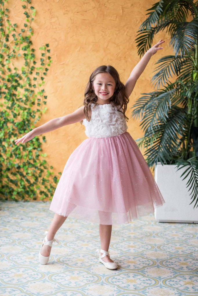 Kid's Dream Princess Dress Ruffle Top Sparkly Skirt