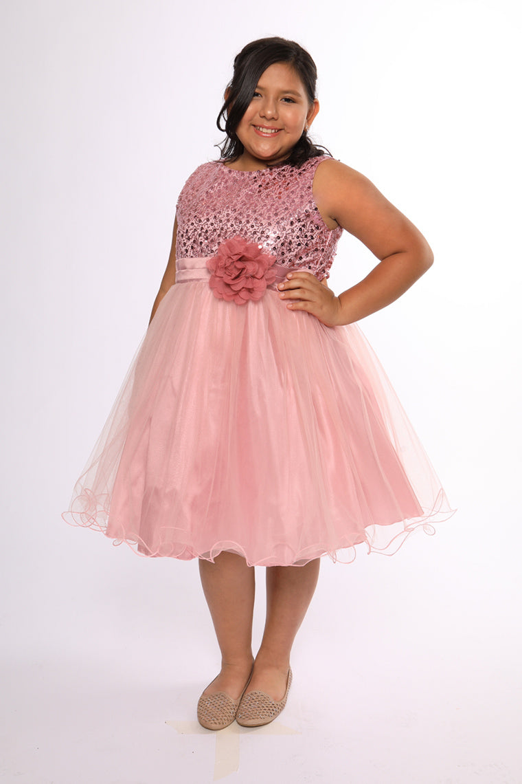 74dff7cd14885 Kid's Dream Plus Size Dresses