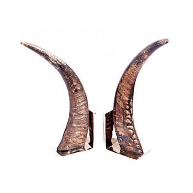 Siwana Horn/Silver Bookends