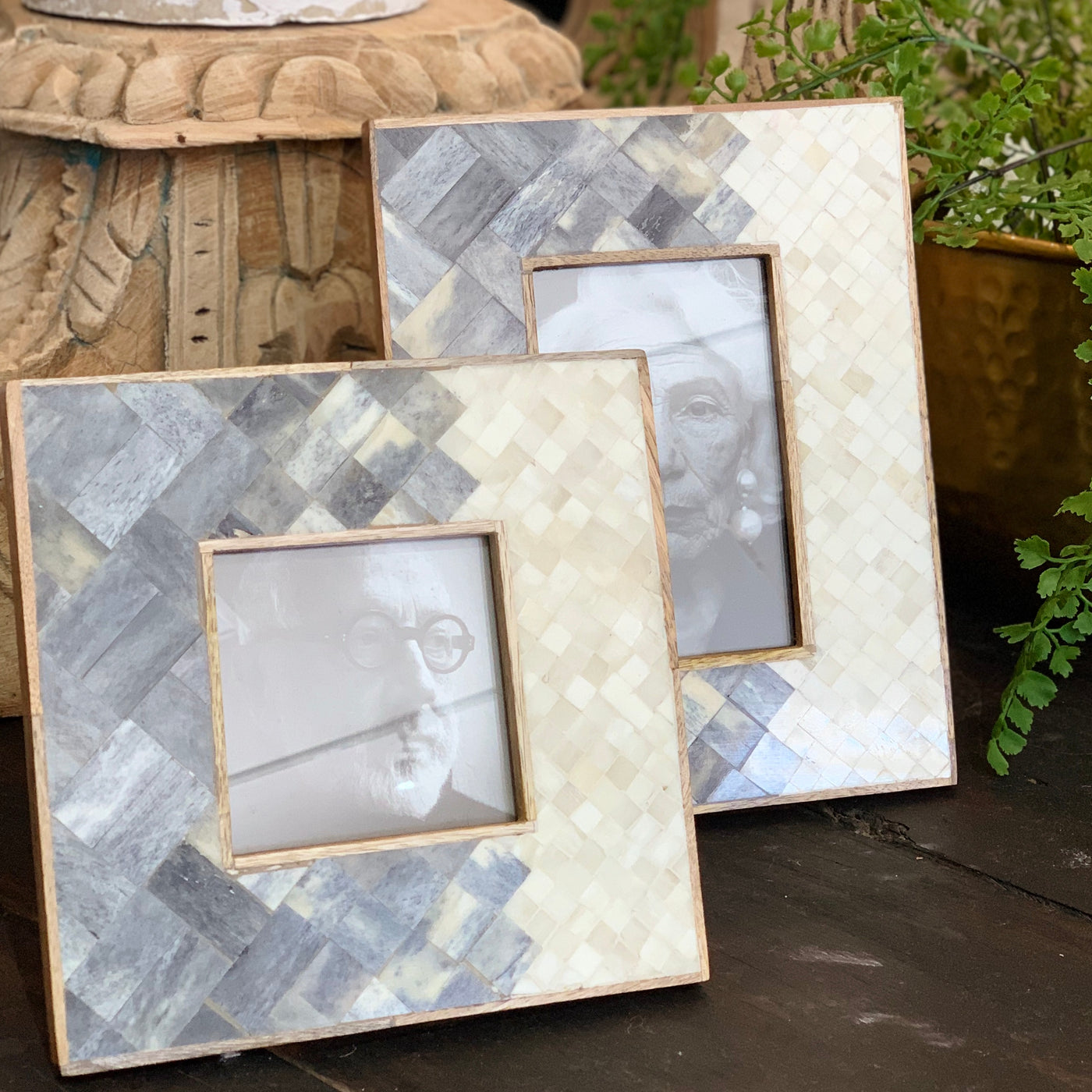 Grey and White Bone Frame