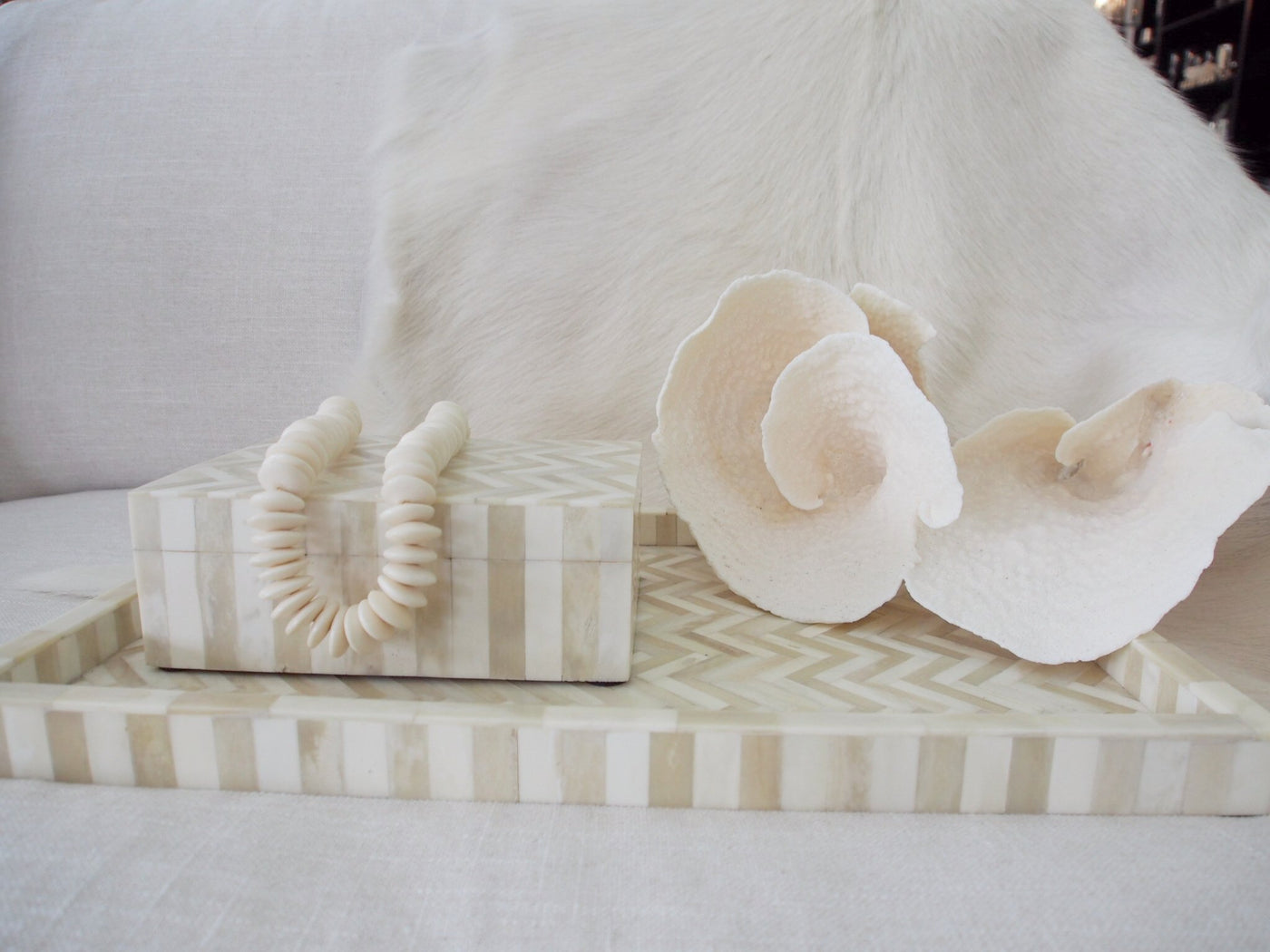 White and Natural Bone Tray