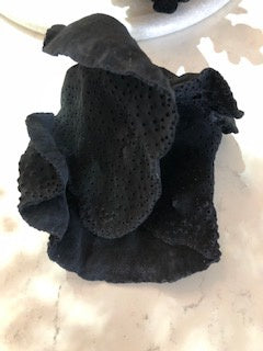black turbin coral small