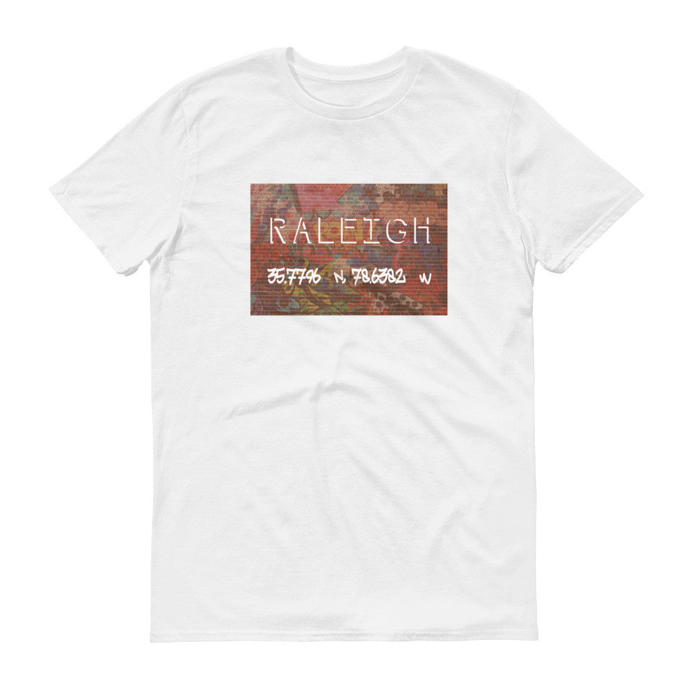 Raleigh Coordinates (Free Expression)