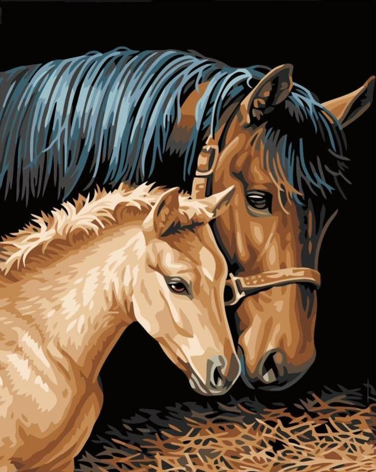 Paint by Numbers - Baby Horse with Mother