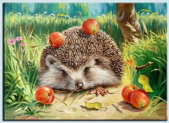 Paint By Numbers - Garden Hedgehog