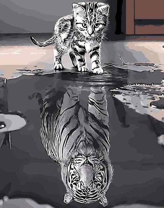 Paint by Numbers - Cat vs Tiger Reflection