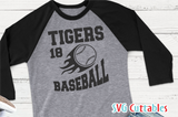 Baseball Team Template 006