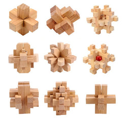 3D Educational Interlocking Wooden Brain Teaser Puzzle Game Toy