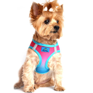 Doggie design American river dog harness ombre collection sugar plum