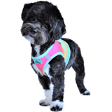 Beach Party Ombre dog harness