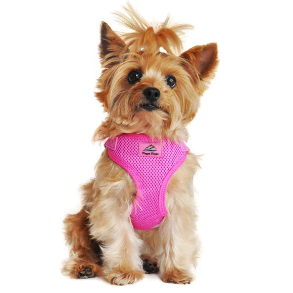 picture of a dog wearing a raspberry pink dog harness