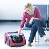 Carriers And Slings To Carry Your Dog Child With You. - Dog Carrier Gen7pets Roller Carrier With Smart-Level Pet Carrier  Red